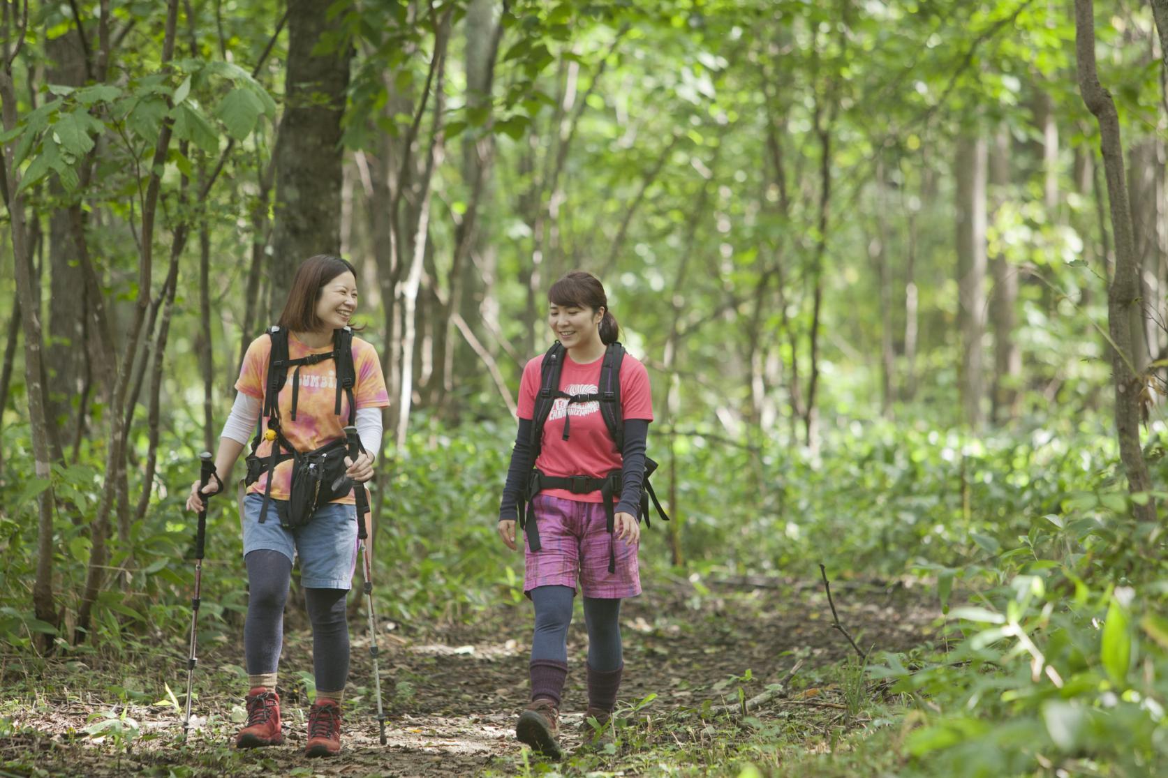 新緑に包まれてリフレッシュ!初夏に楽しむハイキング
