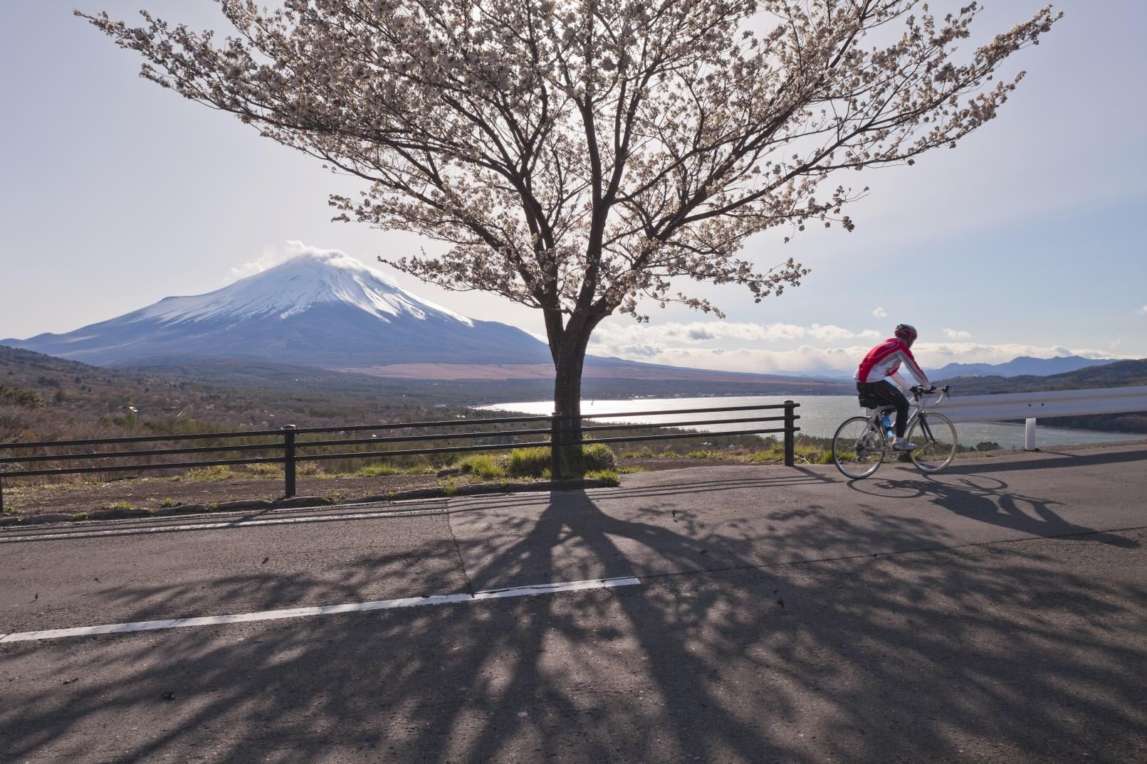 Lake Yamanaka in spring is perfect for cycling