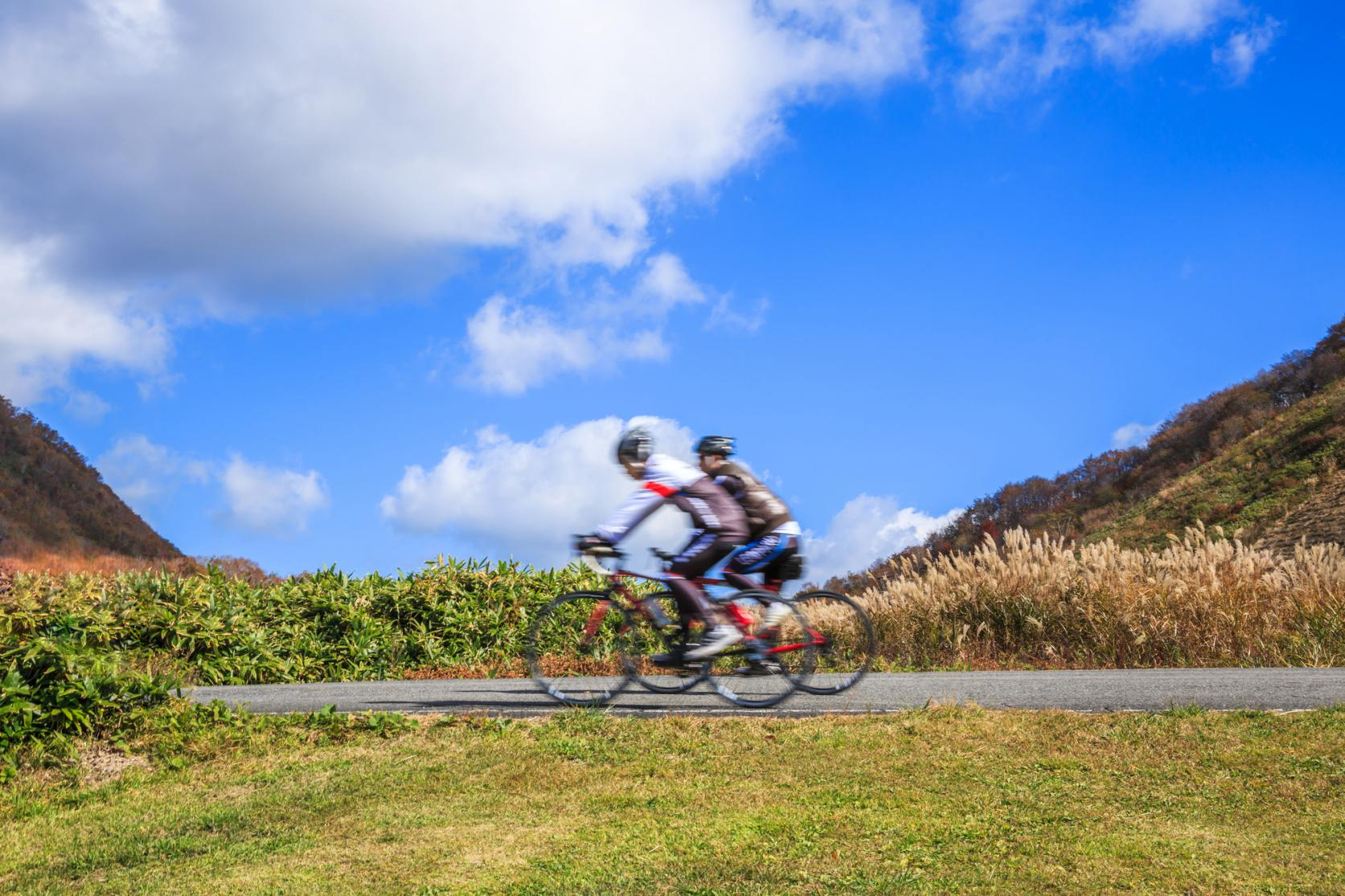 大自然に囲まれた山中湖でサイクリングを楽しもう!-2