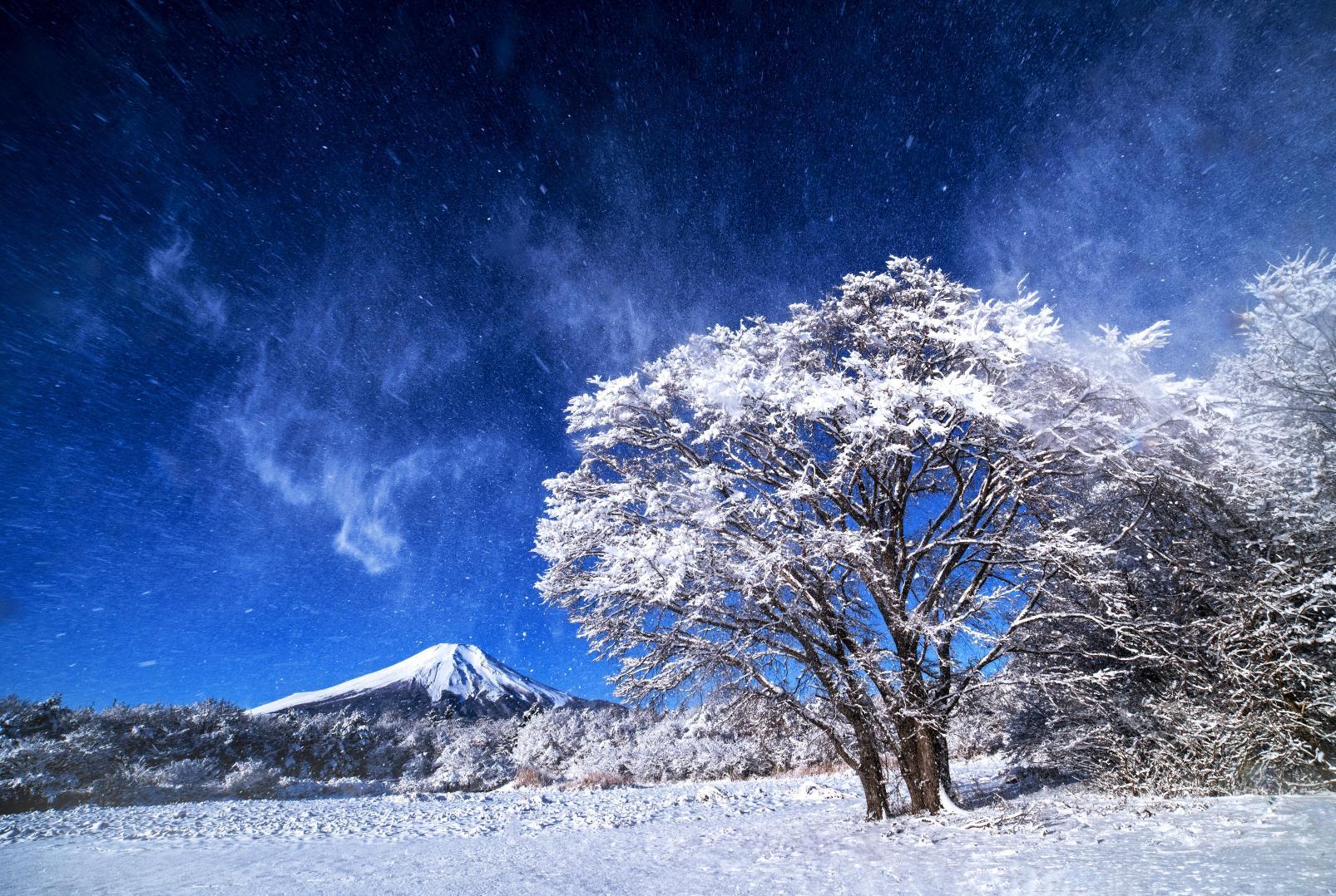夏は涼しい、標高約1000mの高原リゾート-0