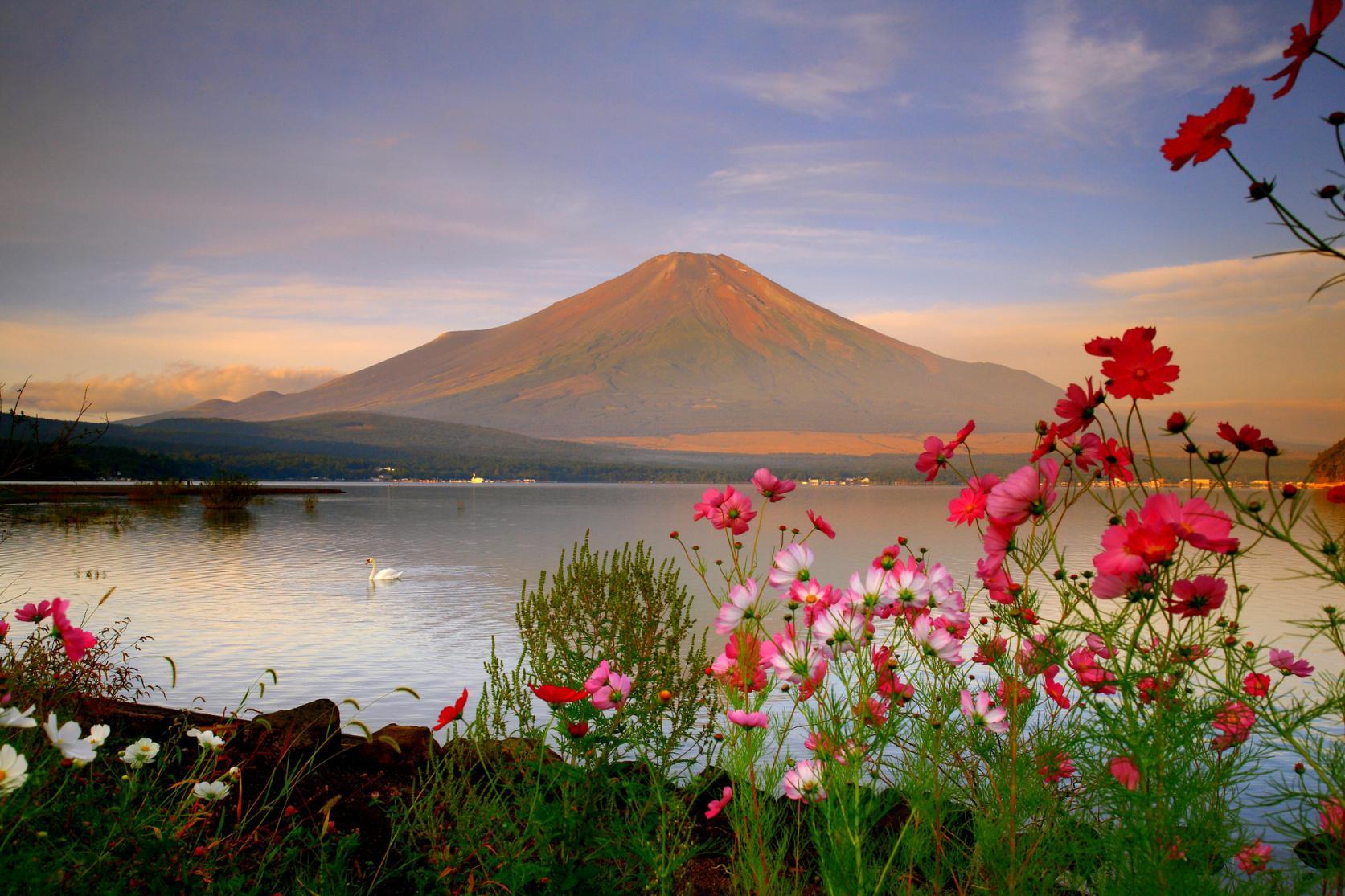 湖と富士山が織りなす四季折々の絶景-2
