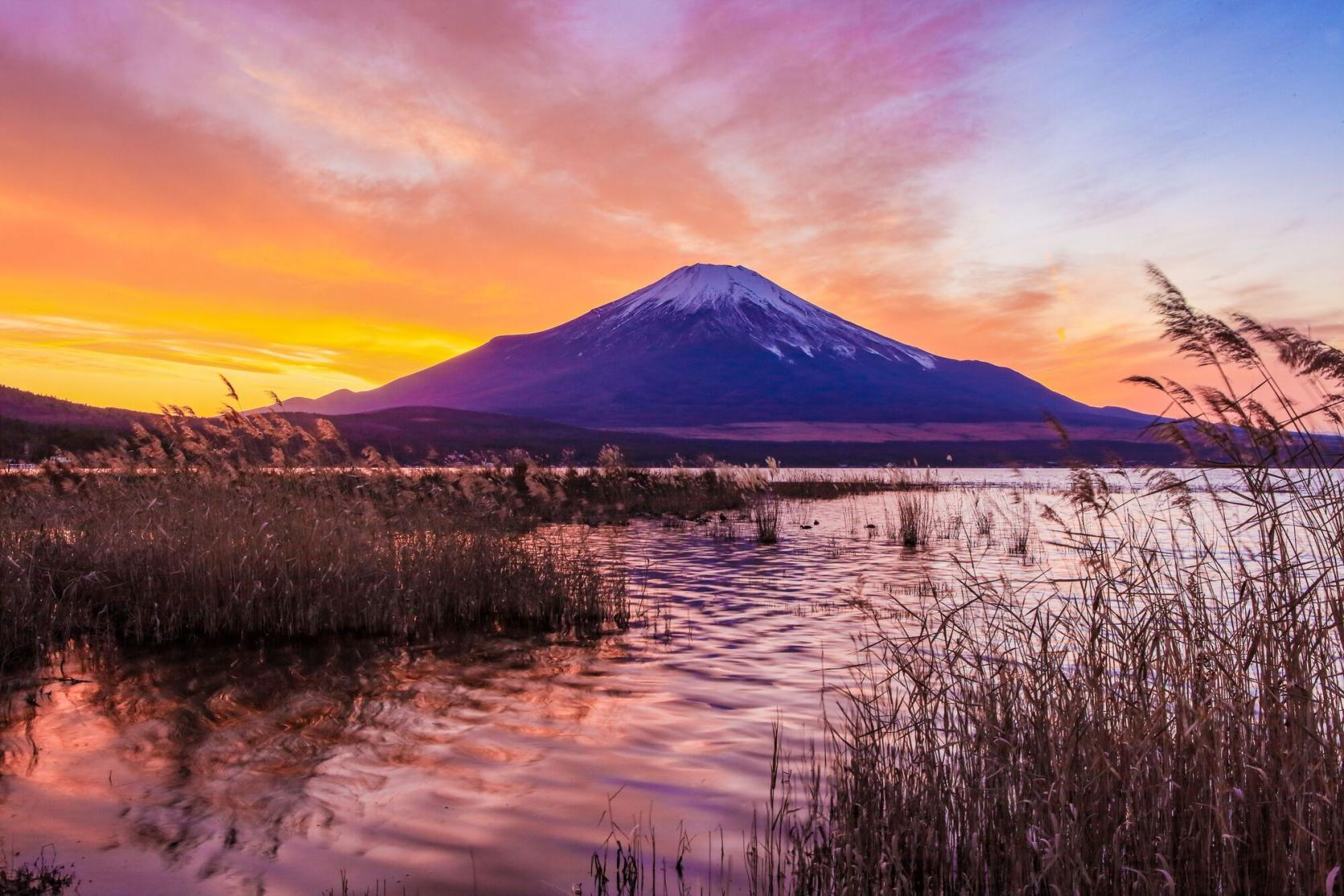 湖と富士山が織りなす四季折々の絶景-5