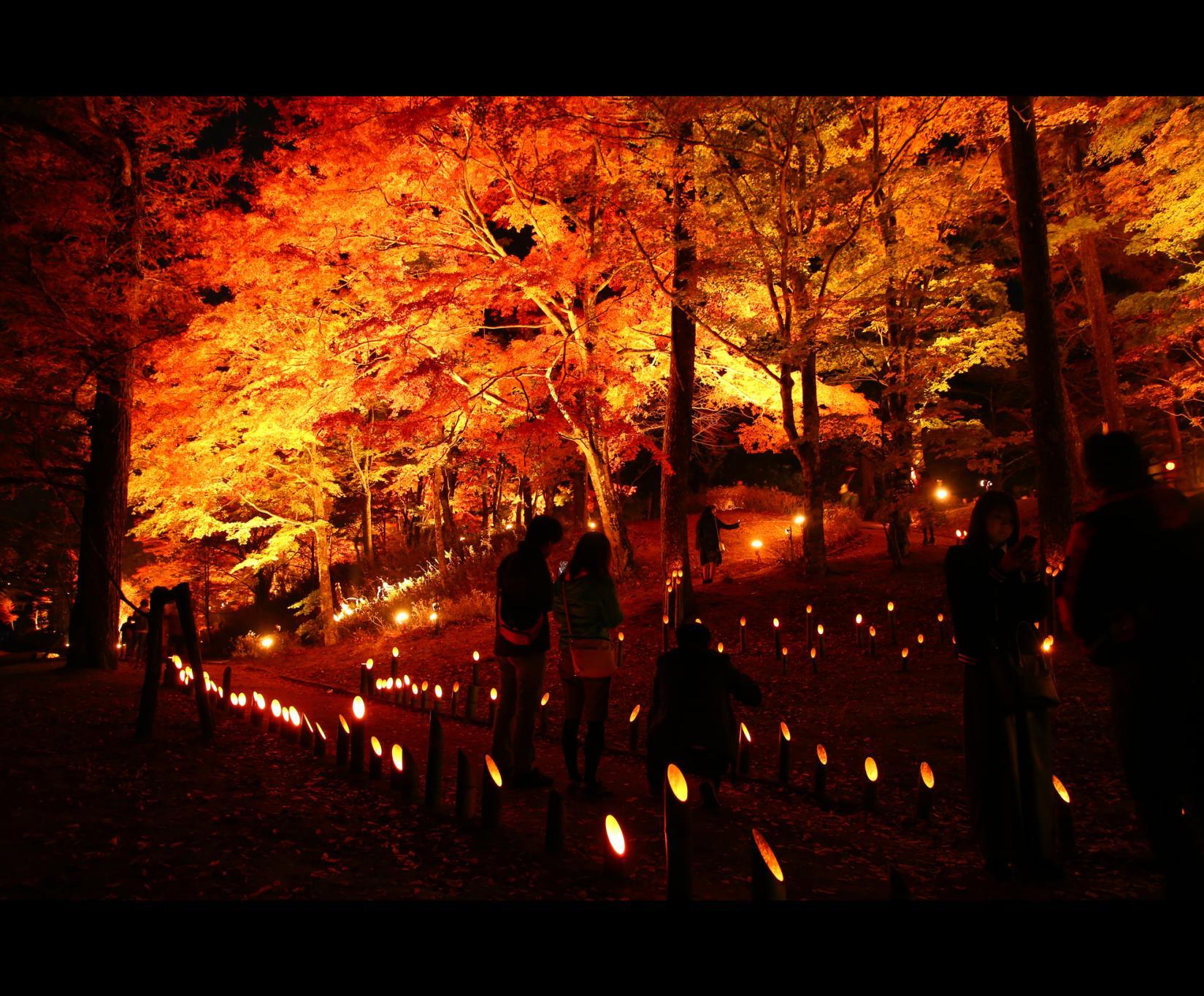 Event to be held at Lake Yamanakako Area-2