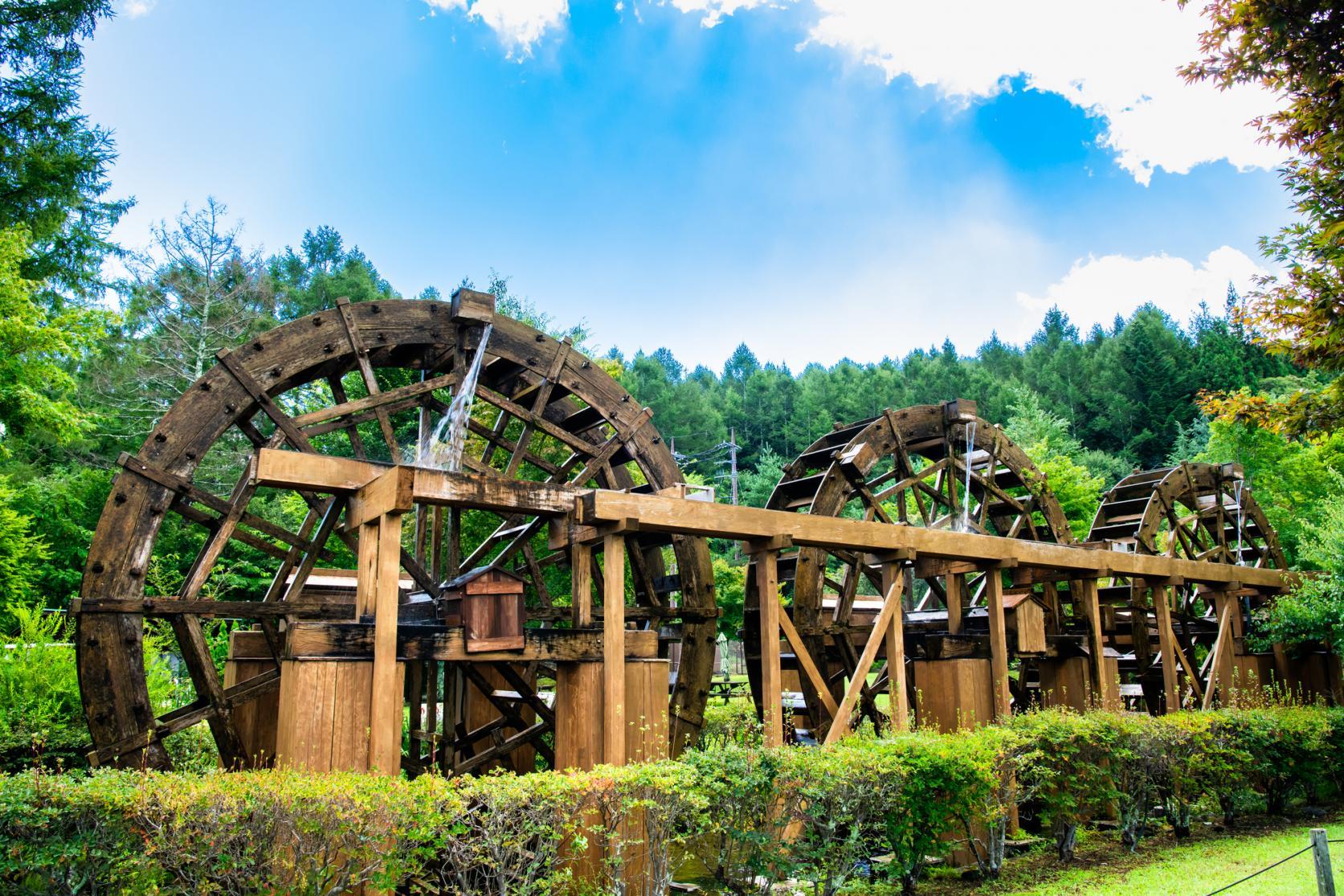 山中湖 花の都公園-5