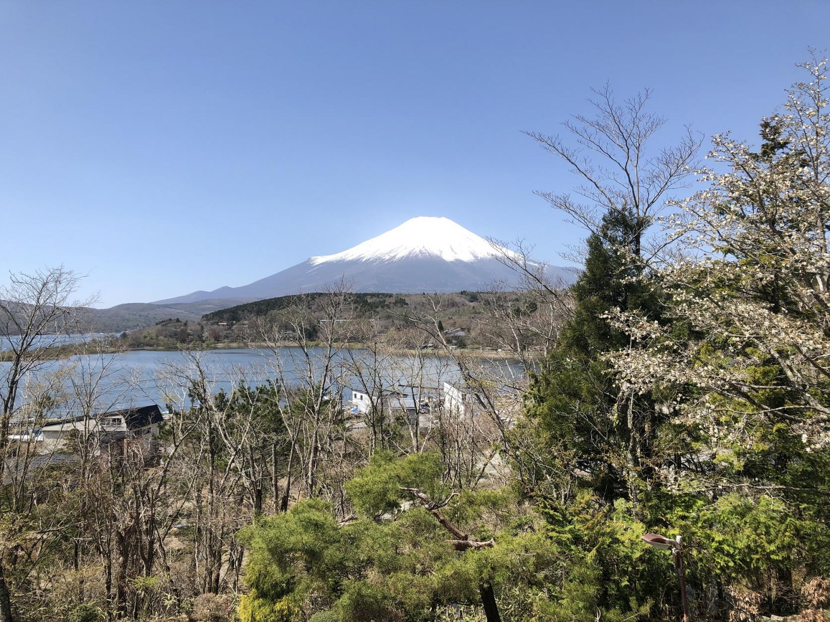 お部屋から富士山と山中湖を一望できます