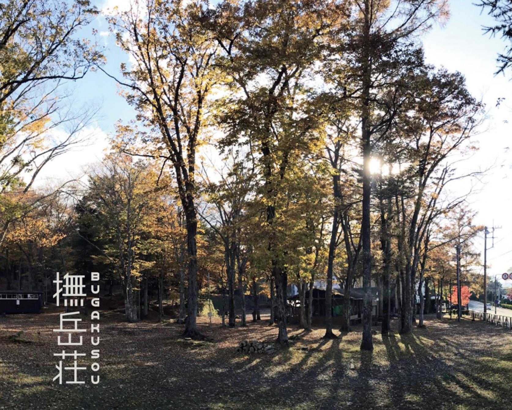 撫岳荘キャンプ場-1