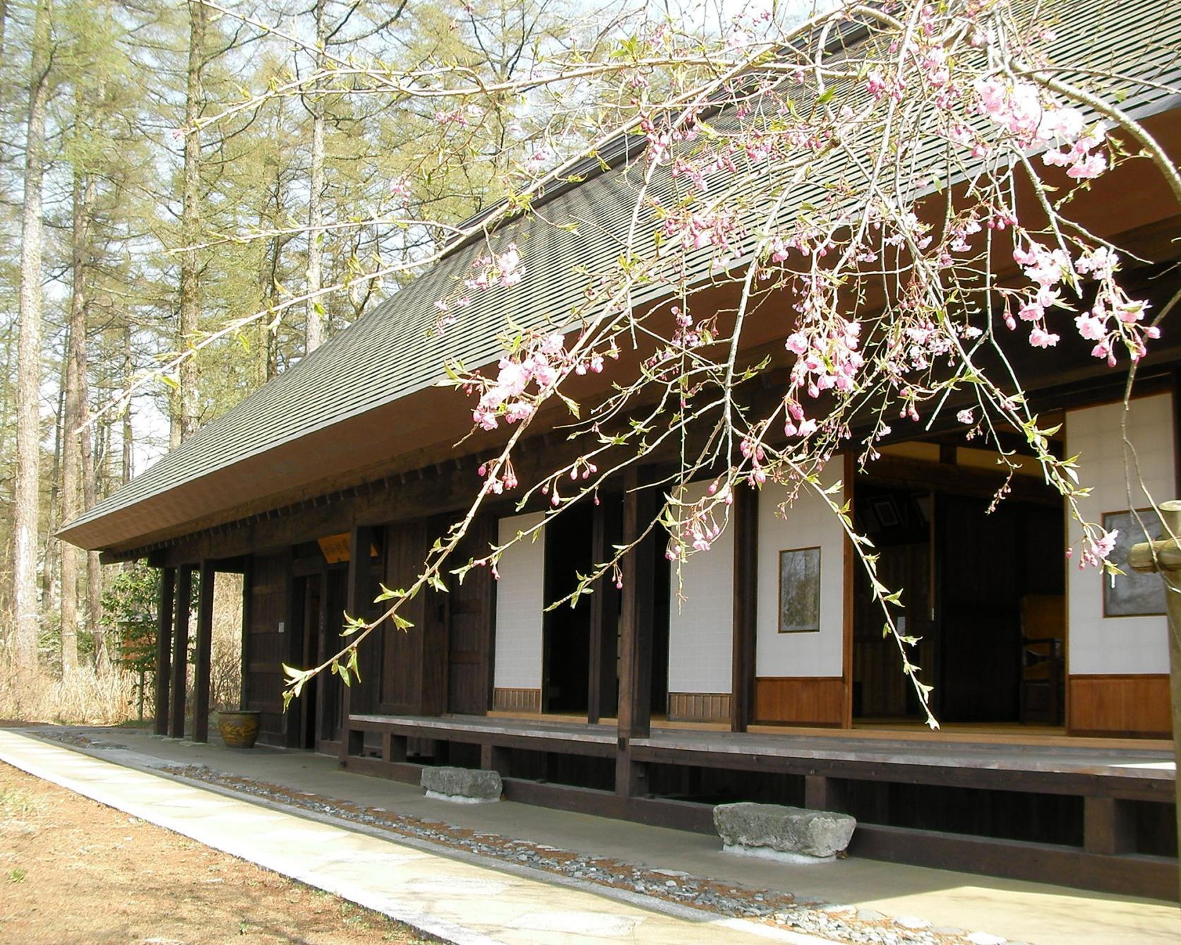 Yamanakako Bungaku no mori Kouen(Park of literature)-1
