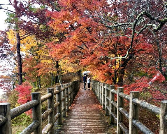 Asahigaoka lakeside Parkland-5
