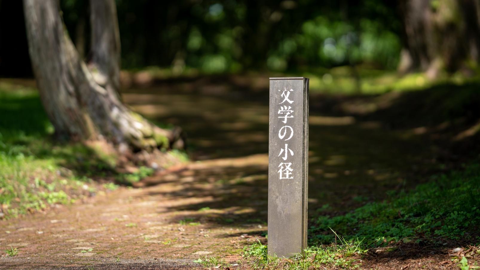 Yukio Mishima Literary Museum-3