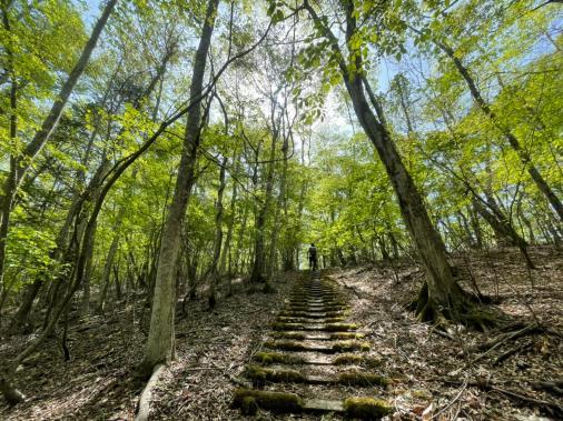 のんびり大平山ハイキング-4