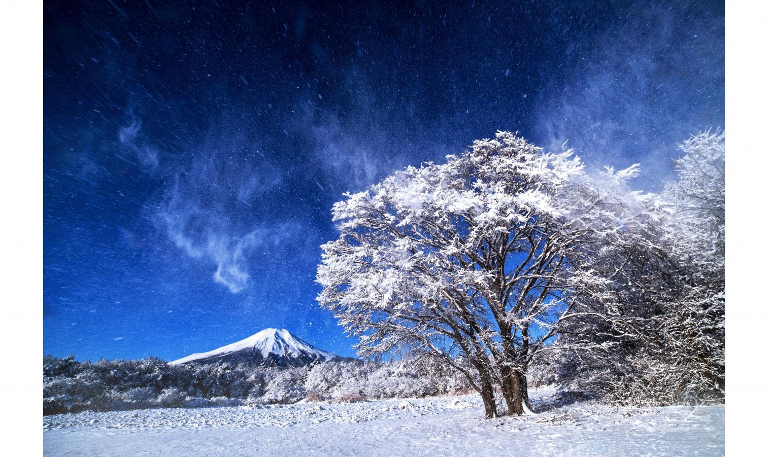 冬におすすめ-1